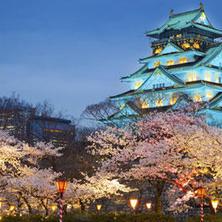 Por que estudar no Japão?